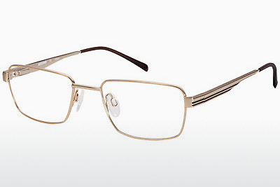 brille Aristar AR16224 501 - Gull