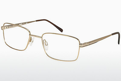 brille Aristar AR16227 501 - Gull