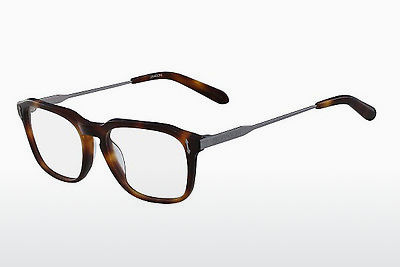 brille Dragon DR155 JEFF 240 - Skilpadde
