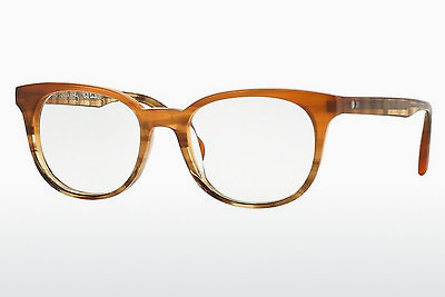 brille Paul Smith ADLEY (PM8234U 1462) - Oransje, Brun, Havanna
