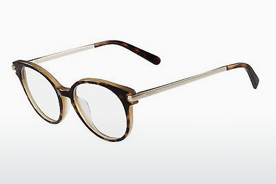 brille Salvatore Ferragamo SF2764 245