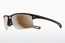 solbrille Adidas Raylor L (A404 6053) - Brun