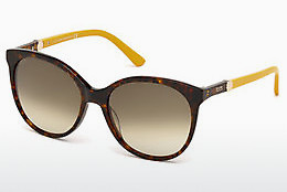 solbrille Tod's TO0174 52F - Brun, Havanna