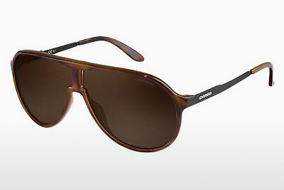 solbrille Carrera NEW CHAMPION 8F8/SP - Brun, Havanna