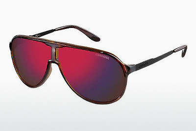 solbrille Carrera NEW CHAMPION LAO/BJ - Sort, Brun, Havanna