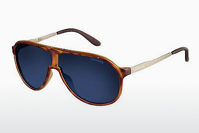 solbrille Carrera NEW CHAMPION VR0/KU - Gull, Brun, Havanna