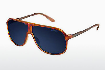 solbrille Carrera NEW SAFARI TVM/KU - Havanna, Brun