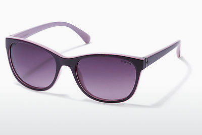 solbrille Polaroid P8339 C6T/JR - Purple