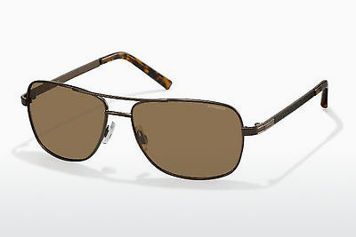 solbrille Polaroid PLD 2029/S QHR/IG - Brown