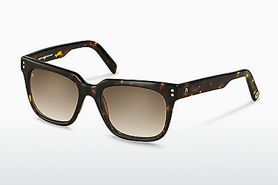 solbrille Rocco by Rodenstock RR311 C - Brun, Havanna