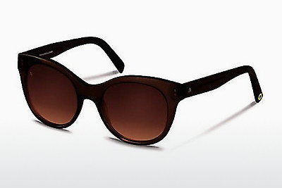 solbrille Rocco by Rodenstock RR315 D - Brun