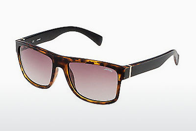 solbrille Sting SS6543 738P