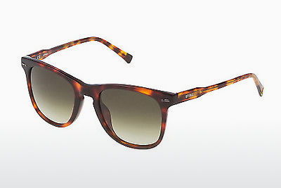 solbrille Sting SS6581 09AT - Brun, Havanna