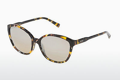 solbrille Sting SS6582 GGEX - Gul, Havanna