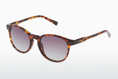 solbrille Sting SS6583 09AT - Brun, Havanna