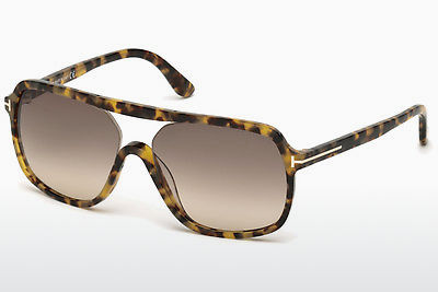 solbrille Tom Ford Robert (FT0442 53F) - Havanna, Yellow, Blond, Brown