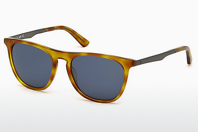 solbrille Web Eyewear WE0160 53V - Havanna, Yellow, Blond, Brown