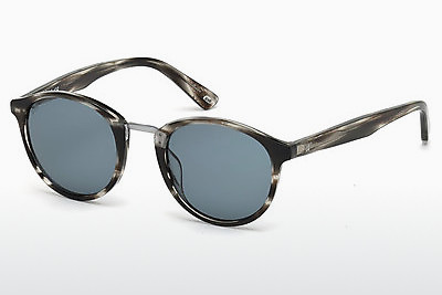 solbrille Web Eyewear WE0168 20V - Grå