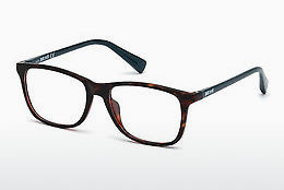 brille Just Cavalli JC0766 053 - Havanna, Yellow, Blond, Brown