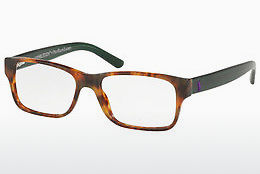 brille Polo PH2117 5650 - Brun, Havanna