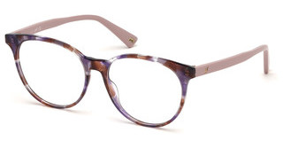Web Eyewear WE5291 55A