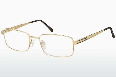 brille Aristar AR16232 501