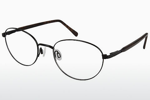 brille Aristar AR16242 538