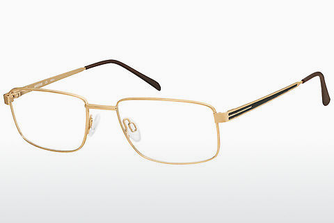 brille Aristar AR16263 501