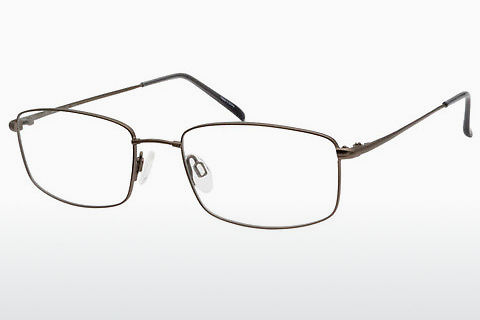 brille Aristar AR16267 505