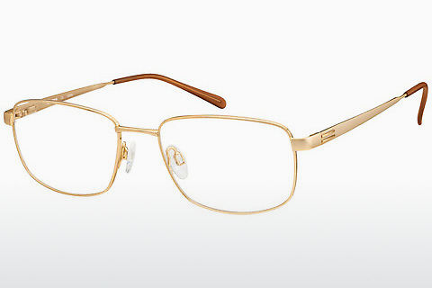 brille Aristar AR16272 501