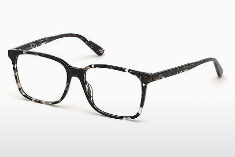 brille Web Eyewear WE5292 055