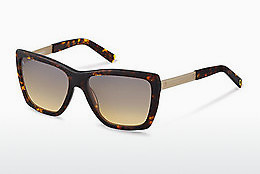 solbrille Rocco by Rodenstock RR320 B - Brun, Havanna