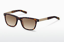 solbrille Rocco by Rodenstock RR322 B - Brun, Havanna