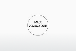 solbrille Superdry SDS Palmsprings 106 - Sort