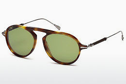 solbrille Tod's TO0205 53N - Havanna, Yellow, Blond, Brown