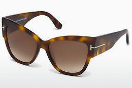 solbrille Tom Ford Anoushka (FT0371 53F)