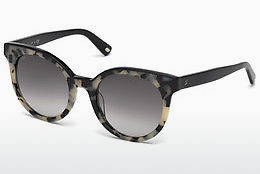 solbrille Web Eyewear WE0195 56B - Havanna