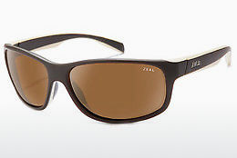 solbrille Zeal SABLE 11437