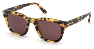 Tom Ford FT0676 56S anderehavanna