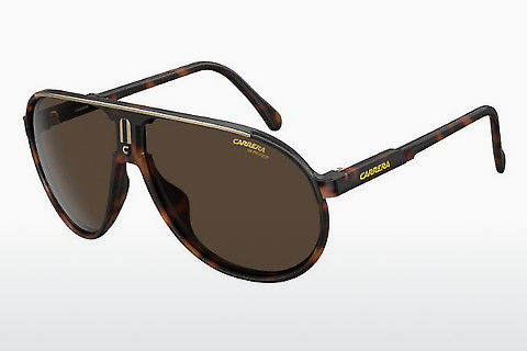 solbrille Carrera CHAMPION 086/70
