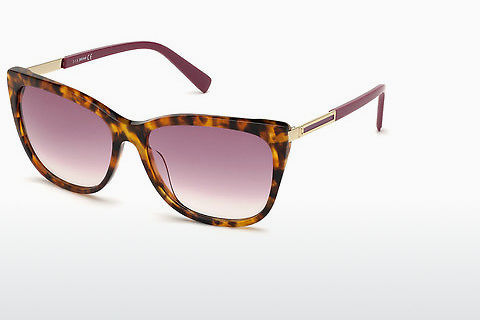 solbrille Just Cavalli JC918S 54Z