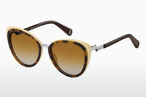 solbrille Max & Co. MAX&CO.359/S 9N4/81