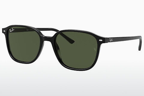 solbrille Ray-Ban LEONARD (RB2193 901/31)