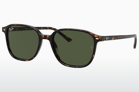 solbrille Ray-Ban LEONARD (RB2193 902/31)