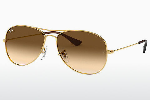 solbrille Ray-Ban COCKPIT (RB3362 001/51)