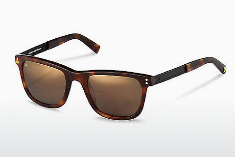 solbrille Rocco by Rodenstock RR322 H
