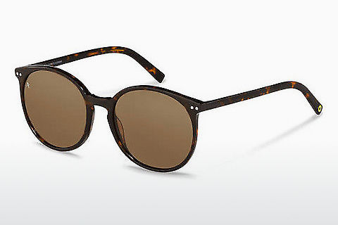 solbrille Rocco by Rodenstock RR333 A
