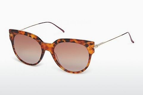 solbrille Scotch and Soda 7005 104