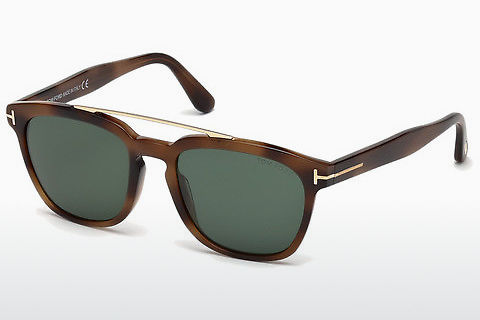 solbrille Tom Ford Holt (FT0516 53N)