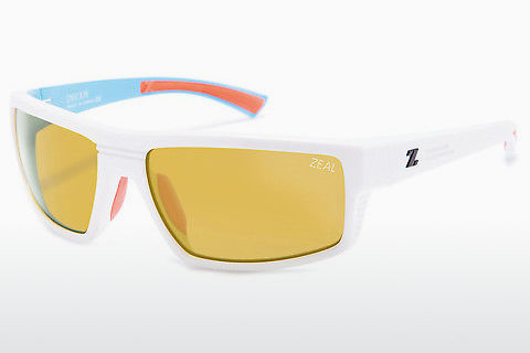 solbrille Zeal DECOY 11029